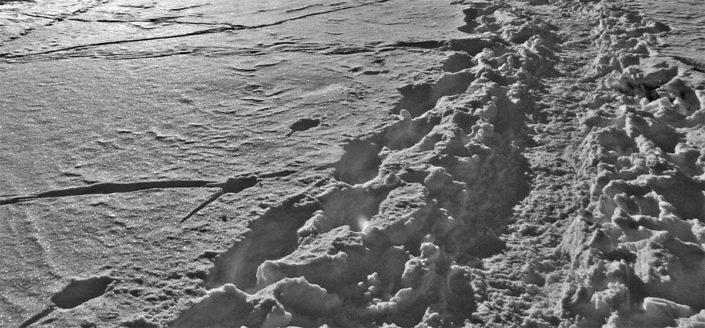 Cammino - Sergio Chiesa